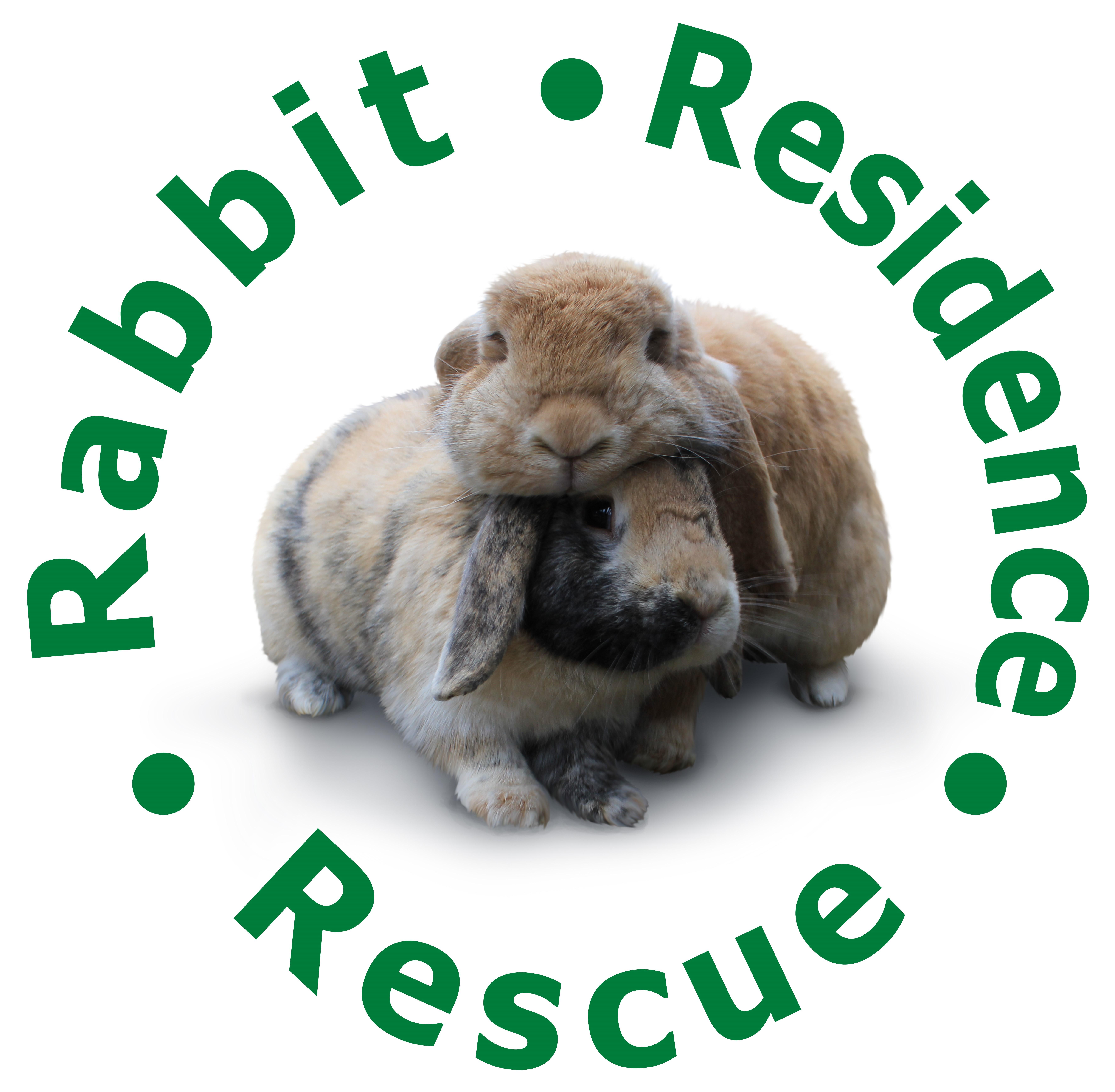 RABBIT RESIDENCE RESCUE