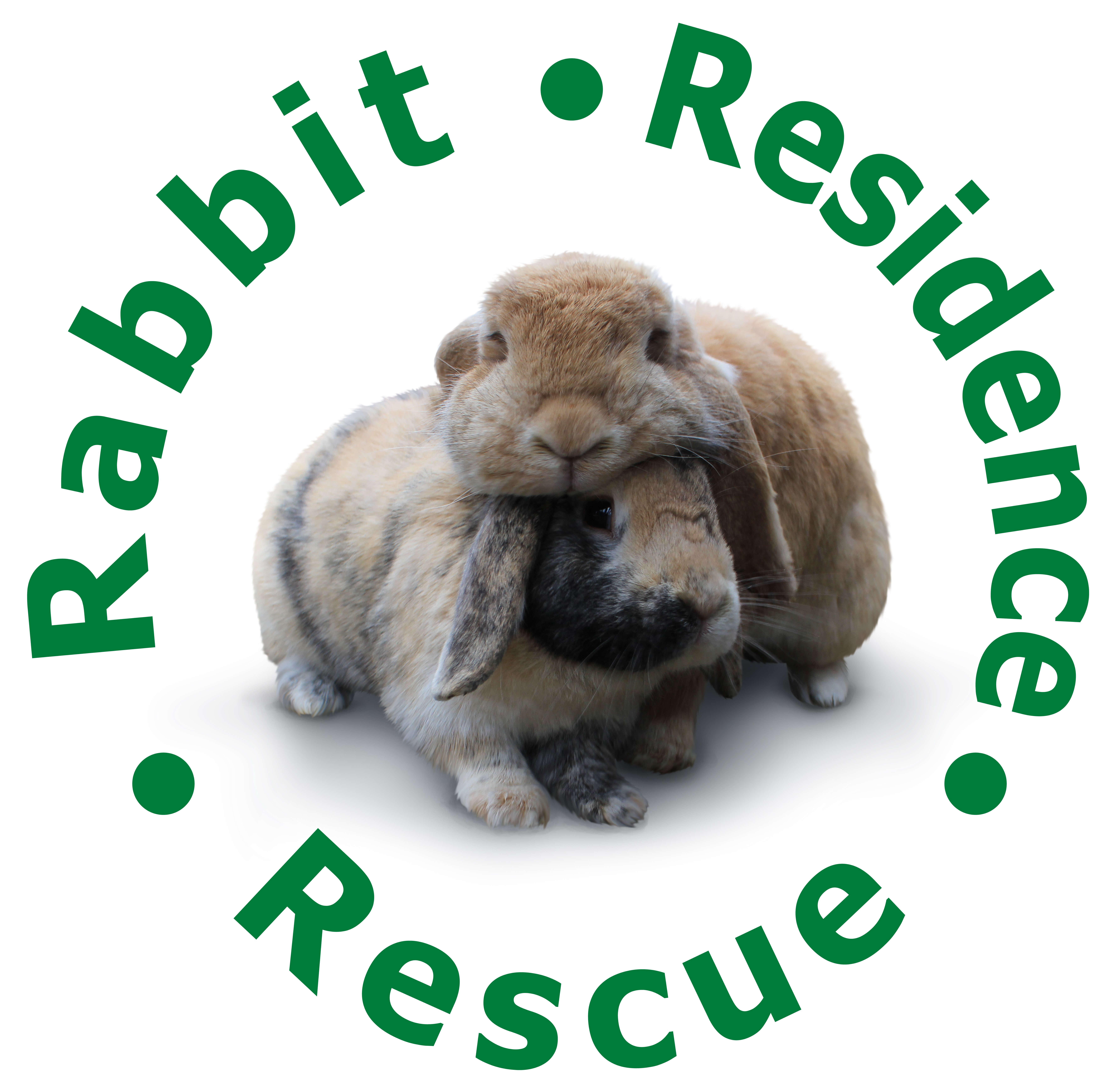 RABBIT RESIDENCE RESCUE
